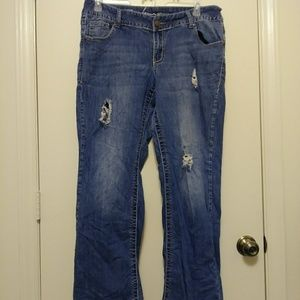 Lane Bryant distressed bootcut jeans